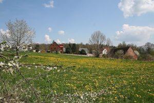 Frühjahr in Fichtenhainichen