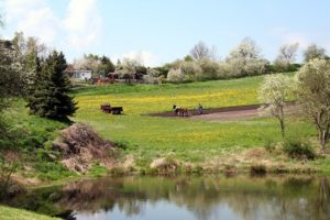 Gorma, Frühling am Bruchteich