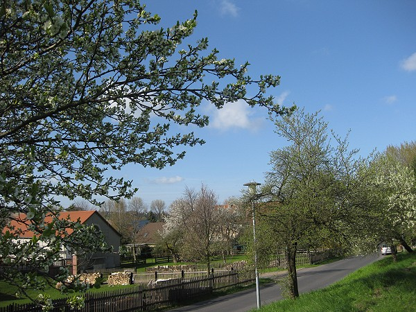 Frühling in der Zetzschaer Straße