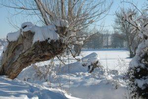 Molbitz, Winter am Gerstenbach