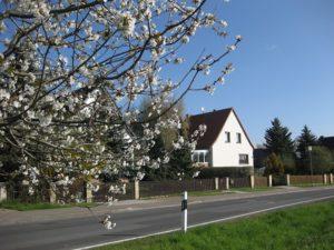 Schelditz, Talstraße im Frühling